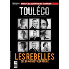 N°17 Les rebelles de l'économie Toulousaine